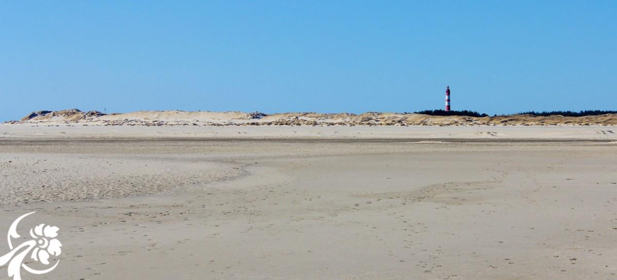 petersen-amrum-leuchtturm-strand