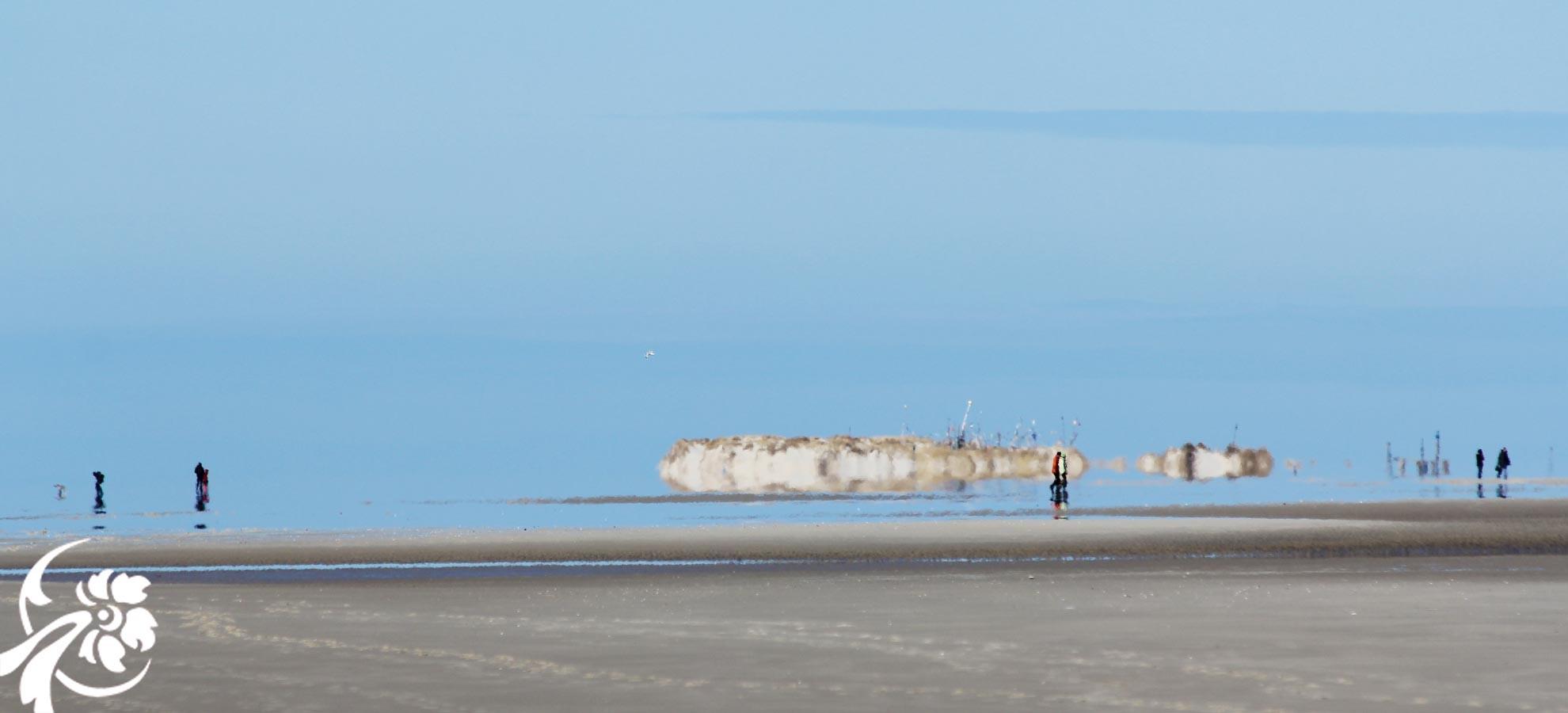 petersen-amrum-strandspaziergang